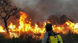 Informe de la FAN señala que más de cuatro millones de hectáreas en Bolivia fueron consumidas por el fuego
