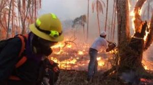 Dos meses después, el fuego continúa en 14 municipios de la Chiquitania; Concepción la más castigada