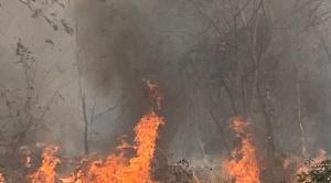 """Kalimán dice que el fuego está """"controlado"""" pero """"no eliminado"""" en la Chiquitania"""