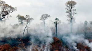 En Bolivia ya se ha quemado el equivalente al departamento de Cochabamba o el doble de Bélgica