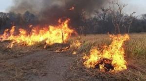 Diputados paraguayos creen que incendios en Bolivia provocaron los de Paraguay y piden resarcimientos