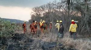 Gracias a lluvias continuas y trabajo de bomberos y voluntarios, incendios en la Chiquitanía se reducen