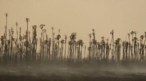 Lluvias disminuyen focos de calor en la Chiquitanía y Parque Tunari