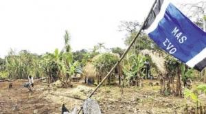 Al menos 797 asentamiento ilegales fueron identificados en tres municipios de la Chiquitania