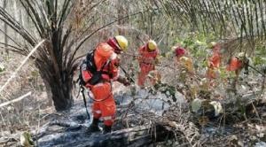 Gobernación cruceña informa que se reactivaron ocho focos de incendio en la Chiquitanía