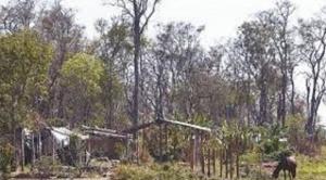 Comité Cívico pro Santa Cruz informa que avanza desalojo de asentamientos ilegales en la Chiquitanía