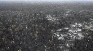 Plan postincendio propuesto por Evo Morales es cuestionado porque no frena desmontes ni asentamientos