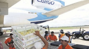 Desde Santa Cruz TAB transporta 300 toneladas de alimentos a La Paz y Cochabamba