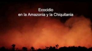 Comisión internacional de expertos visitará región de la Chiquitanía afectada por incendios 1