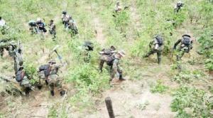 Ministro de Defensa informa que tareas de interdicción en el Chapare se ejecutan sin problemas
