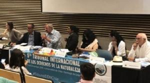 """Misión del Tribunal Internacional de Derechos de la Naturaleza, visibilizará nuevamente """"ecocidio"""" registrado en la Chiquitina 1"""