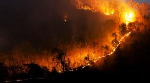 Denuncian que el Gobierno mantiene en la impunidad a responsables del incendio de la Chiquitania