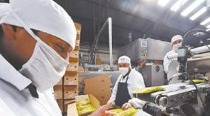 Industriales paceños demandan medidas urgentes para evitar cierre de empresas