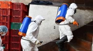 """Santa Cruz reportó 14 nuevos casos de coronavirus y 3 de ellos en Montero, considerada zona de """"riesgo"""""""