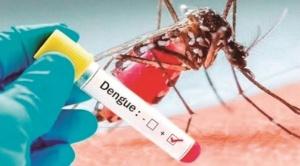 Nuevo problema, Bolivia suma 82.460 casos de dengue y OPS reporta nuevo brote en Latinoamérica