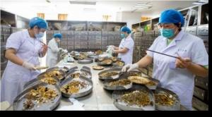 Coronavirus: cómo China está impulsando el uso de su medicina tradicional ante la pandemia (y qué se sabe de su eficacia)