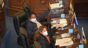 Por unanimidad, Senado aprueba pago del Bono contra el Hambre, de Bs 1.000, la norma pasó a Diputados