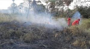 Chiquitania: Añez anuncia declaratoria de emergencia y abrogación del decreto que autoriza quemas