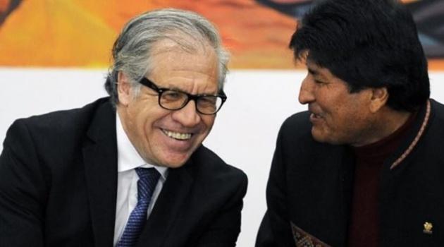Almagro: dos espías argentinos trataron de desvirtuar el informe de la OEA y Evo no quería que se conozca